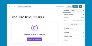 Wordpress DIVI Jacky Lacherest 001